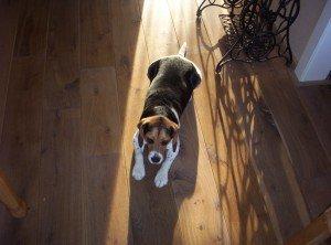Vloerverwarming houten vloer: voor iedereen comfortabel